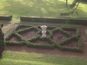 Buxus sempervirens parterre planted with 50-60cm bushes