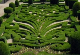 Garden designs for box parterres knot gardens hedges and topiary